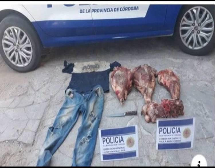 ROBO Y VIOLACIÓN DE CUARENTENA